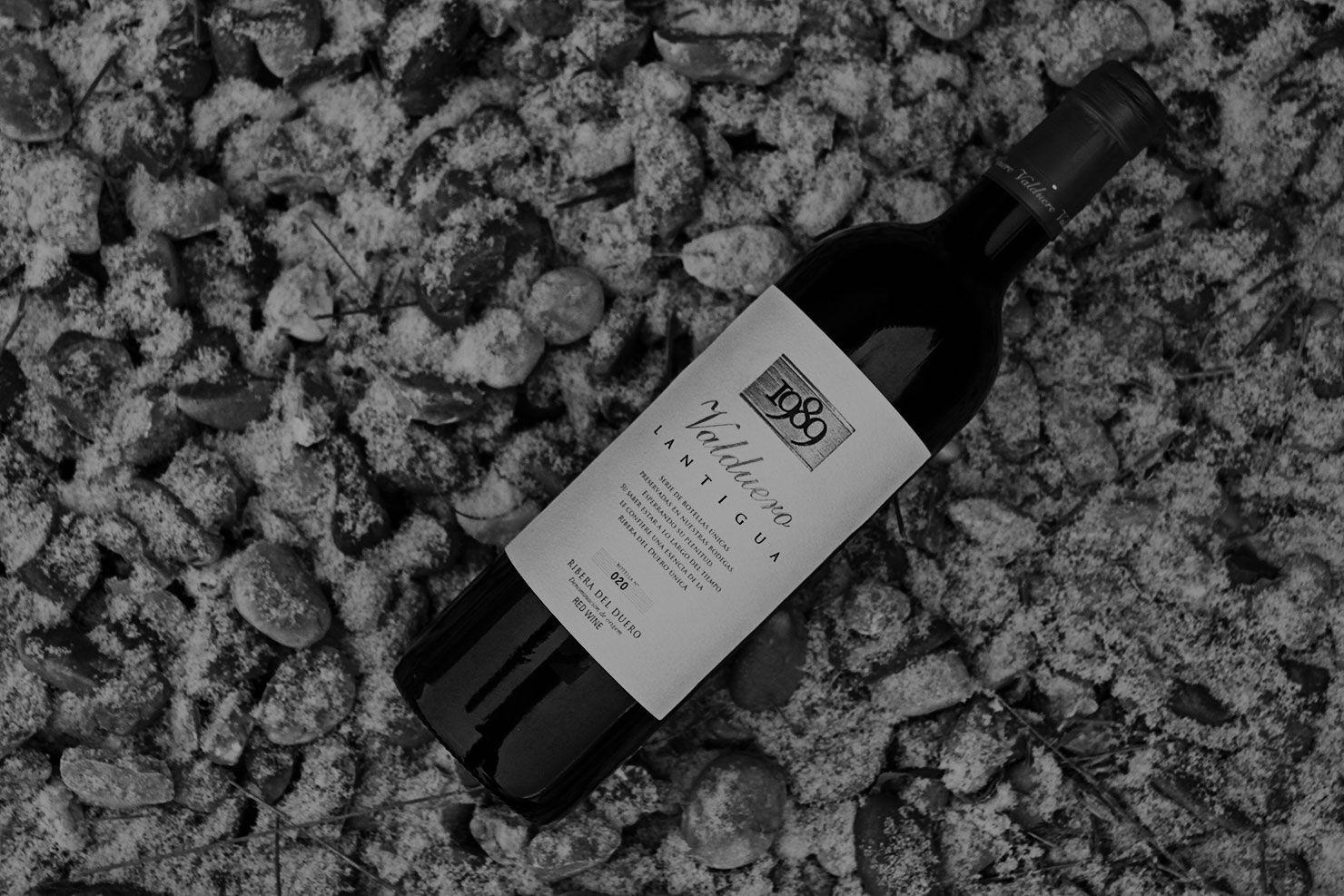 Lantigua, vino de 1989, vino caro de la RIbera del Duero, vino de lujo