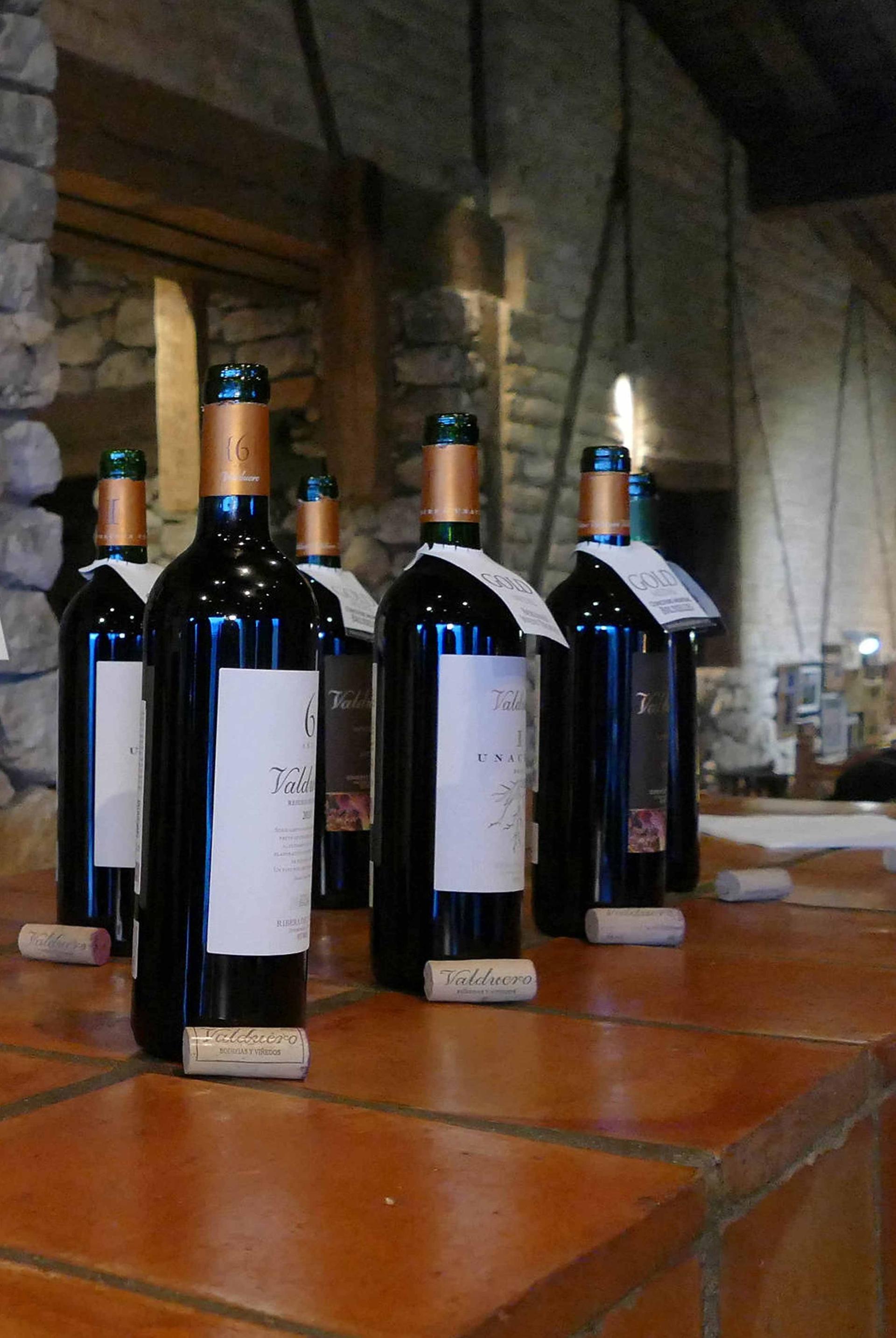 Cata de vinos en las Bodegas Valduero