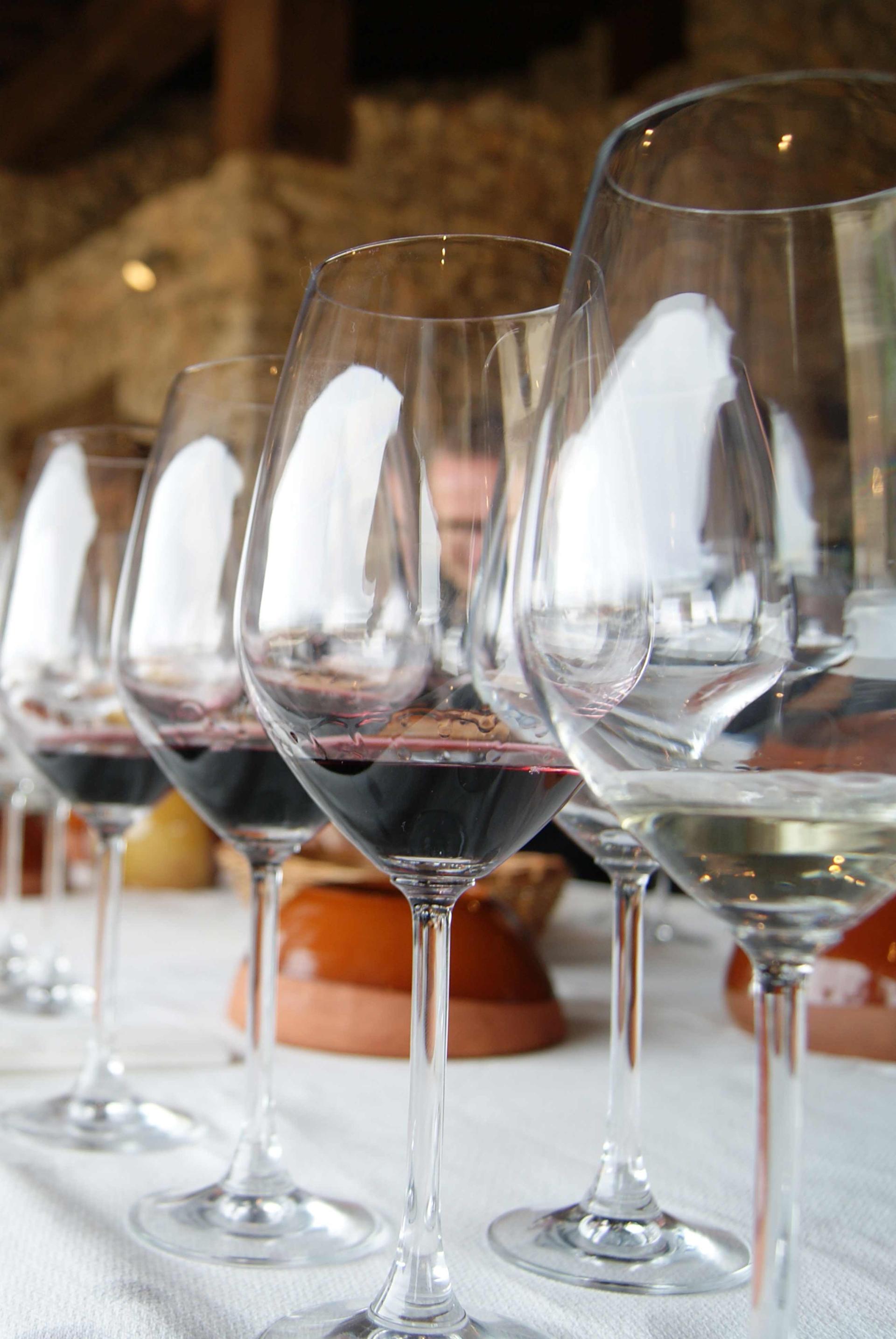 Copas en cata de vino en Bodegas Valduero
